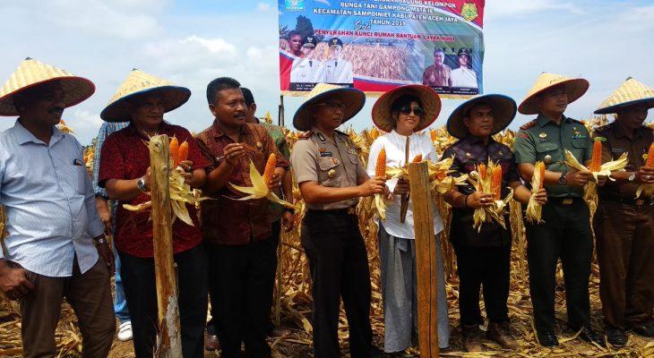 Dandim Aceh Jaya  Bersama Forkopimda Panen Jagung Hibrida