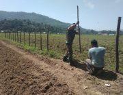 Serda Sumardi Bantu Petani Pasang Pagar di Sawah