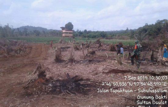 Sukseskan Program Suasembada Pangan, Babinsa Bantu Petani Tanam Jagung