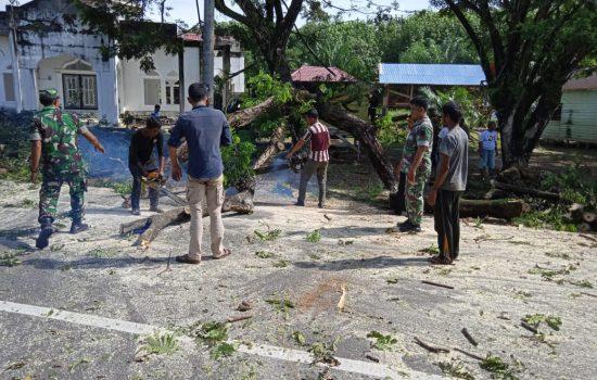 TNI Bersama Warga Tumbang Pohon di Pinggir Jalan