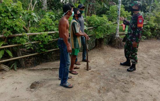 Bertahan Hidup Saat Pandemi Corona, Jajaran Babinsa Koramil 04/Salang Ajak Warga Desa Kenangan Jaya Tingkatkan Produk Pertanian